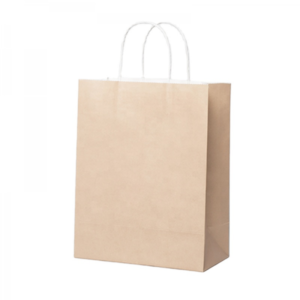Reusable Paper Shopping Bag